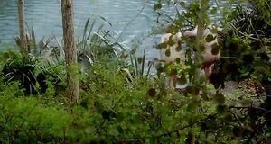 Кейт Уинслет голышом прыгает в воду