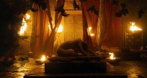 Ритуал с раздетой Софией Бутеллой
